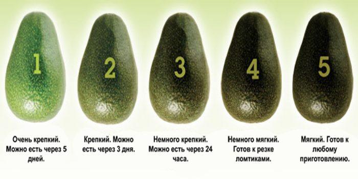 Выбрать авокадо