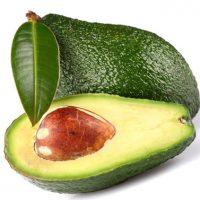 Авокадо простой